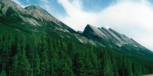 Icefields Parkway. Route (£ Canada